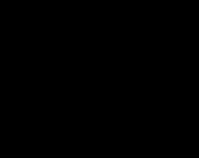 logo-400-black-retina